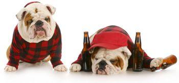 Iti place sa bei mult in weekend? Acest truc polonez te scapa de mahmureala imediat