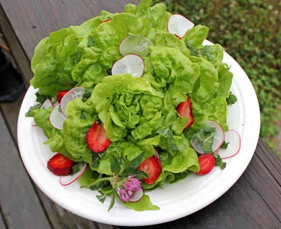 Efectele uimitoare pe care le are salata verde asupra corpului tau. Ce se intampla daca o mananci pe stomacul gol