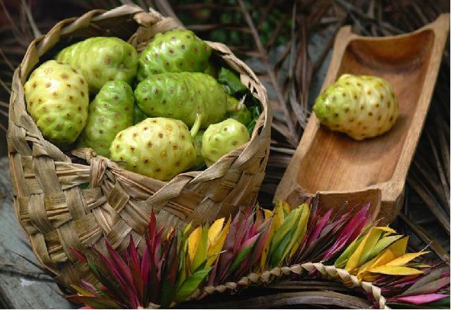Ai auzit de fructul Noni? Ce beneficii miraculoase are asupra organismului si de unde il putem cumpara