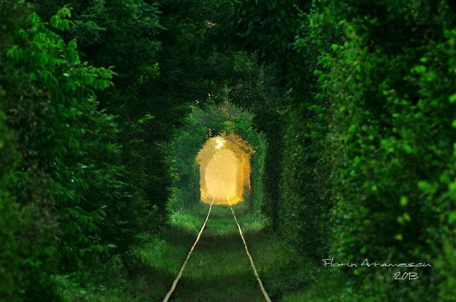 ''Tunelul iubirii'', o cale ferata abandonata din Banat, comoara ascunsa a Romaniei! A fost descoperit intamplator si este unic la noi in tara VIDEO