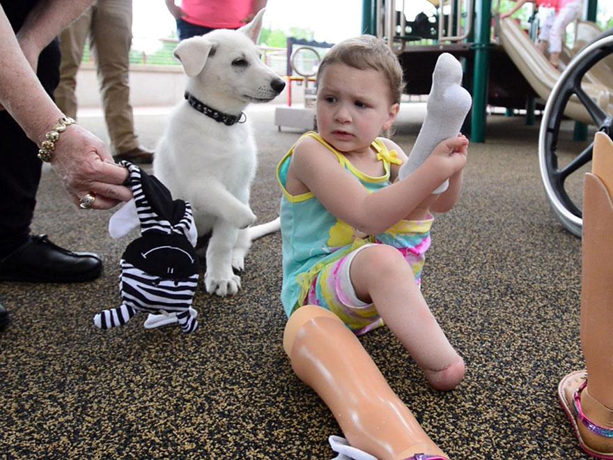Fetita aceasta de 3 ani si-a pierdut ambele picioare dupa nastere! Acum a primit un catel care a suferit exact drama ei