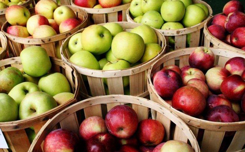 Dieta cu mere, cea mai eficienta! Slabesti 7 kilograme intr-o saptamana