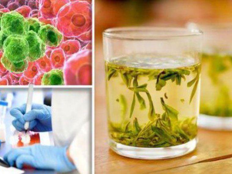 Ceaiul care distruge celulele canceroase în 48 de ore. Cum îl prepari
