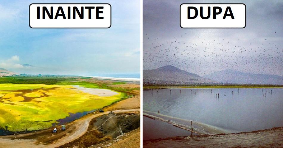 Curatarea lacurilor din intreaga lume s-ar putea face foarte simplu
