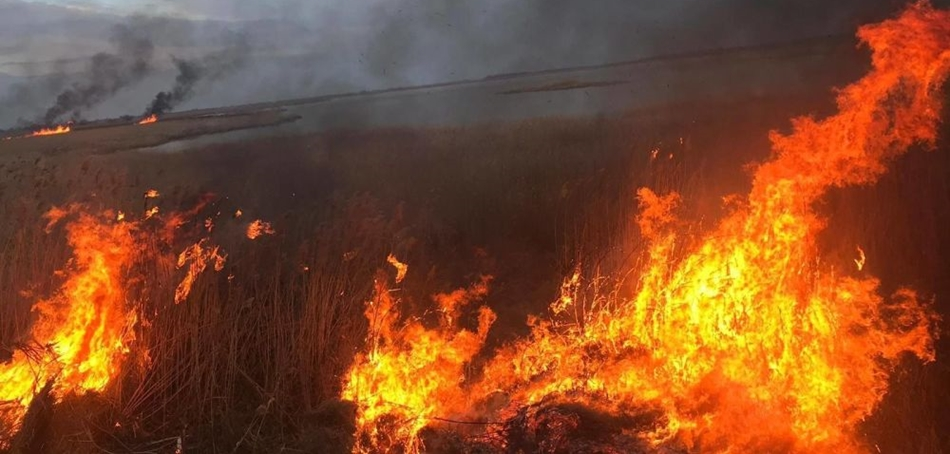 Incendiu de proportii in Olt