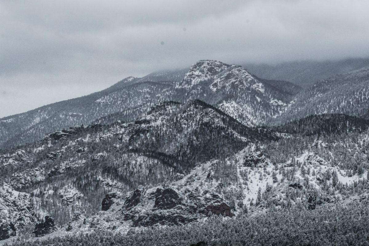 A nins in plina vara