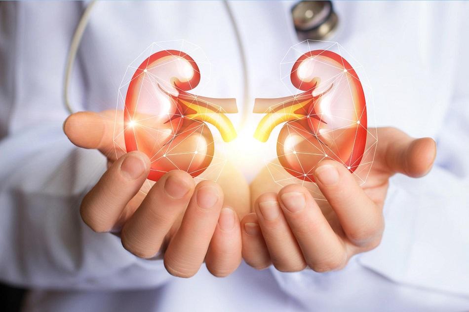 Dieta pentru rinichi ii detoxifica imediat