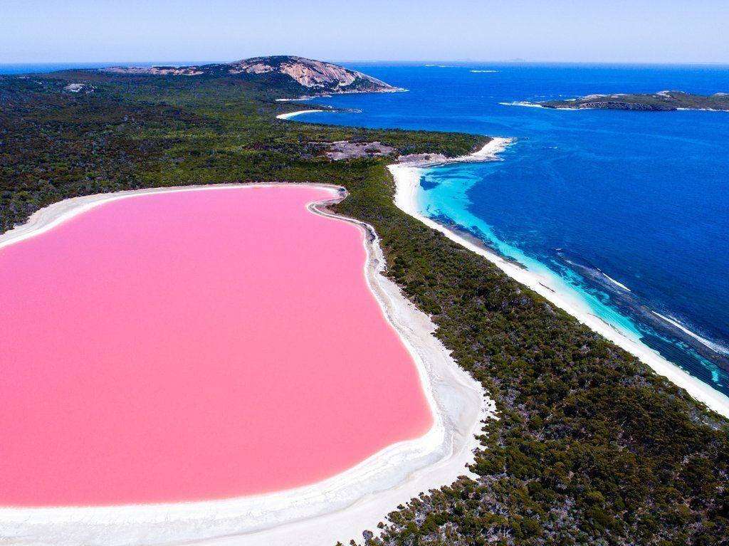 Lacul roz din Australia, una din minunile naturii