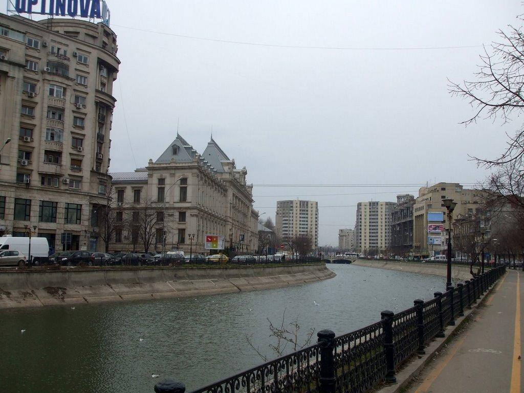 Cadavru descoperit în râul Dâmbovița, în zona Izvor din București