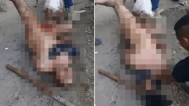 Bărbat castrat de un pitbull