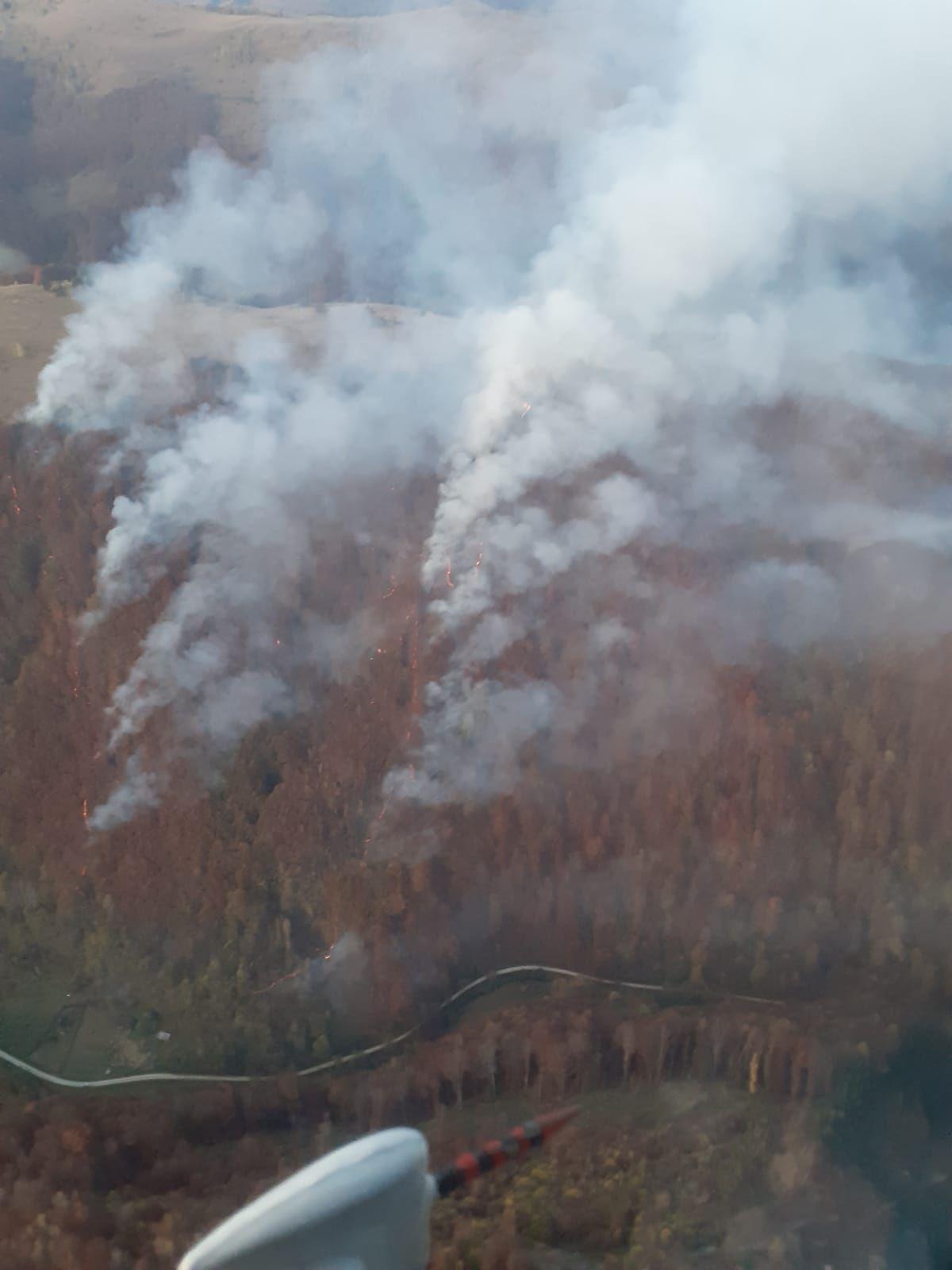 Intervenție a pompierilor din Alba la un incendiu de pădure