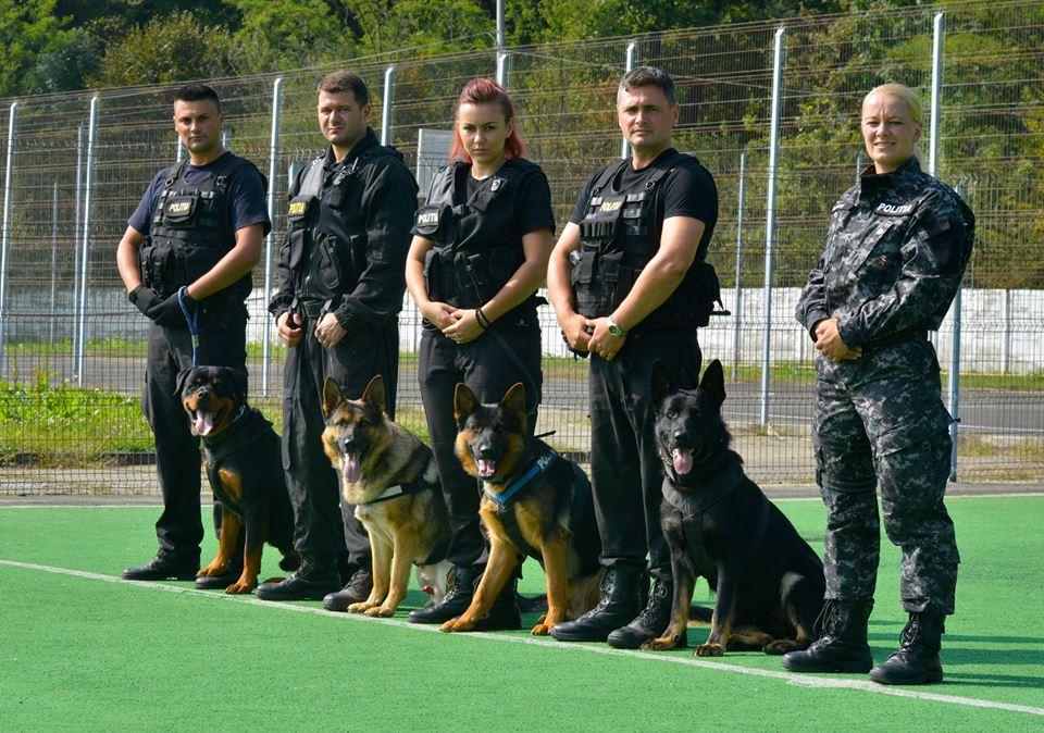 Polițiștii din Vrancea donează 6 câini